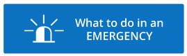 Emergency Graphic